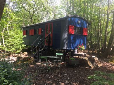 The Woodland Wagon (81329)
