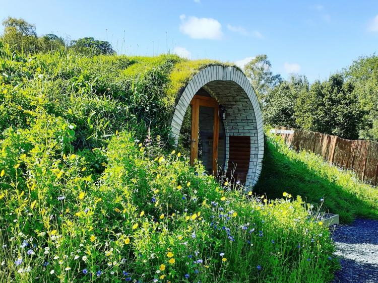 Hobbits Hollow (81415)