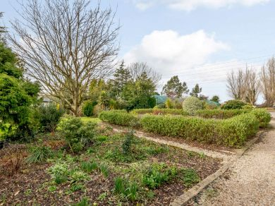 Fig Tree Barn (81480)