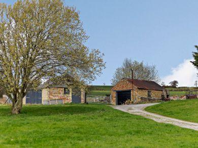 Dandelion Cottage (81503)