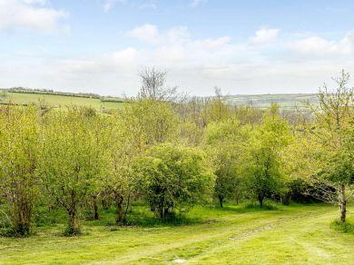 The Pleasant Pheasant On Exmoor (82409)