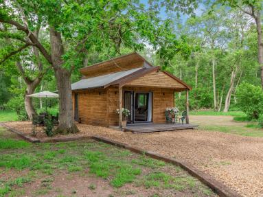 The Foxglove Lodge (82677)