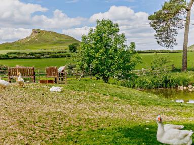 Roseberry Pond Cottage (83328)