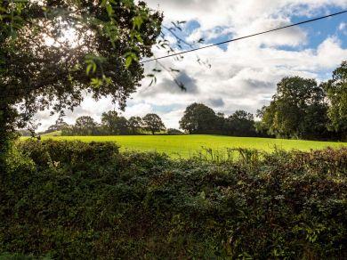 Woodhayes Shepherds Hut (85622)