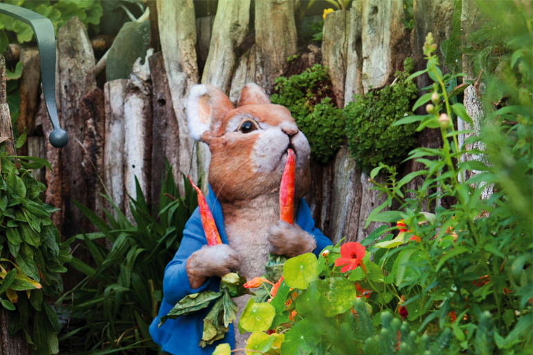 Through the Rabbit Hole with Peter Rabbit