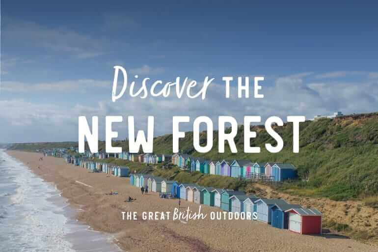 Discover the New Forest