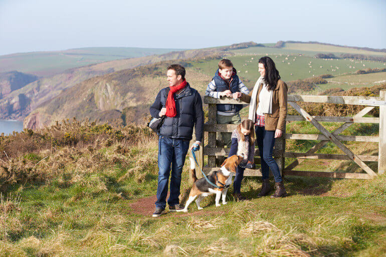 Dog-friendly days out around the UK