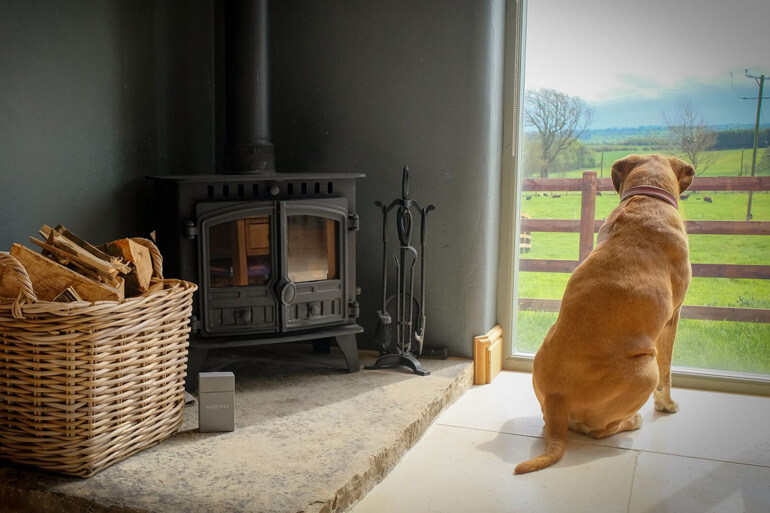 Our top dog-friendly cottages in Yorkshire