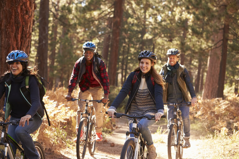 7 New Forest activities for lovers of the outdoors