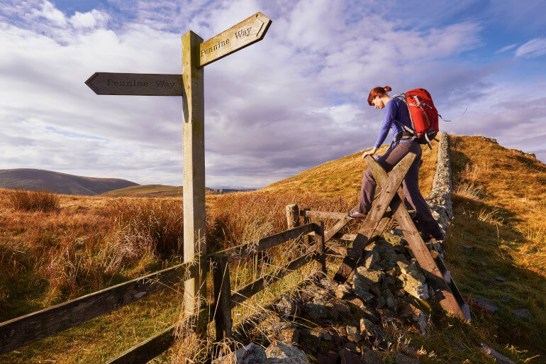 8 of our favourite Northumberland walks