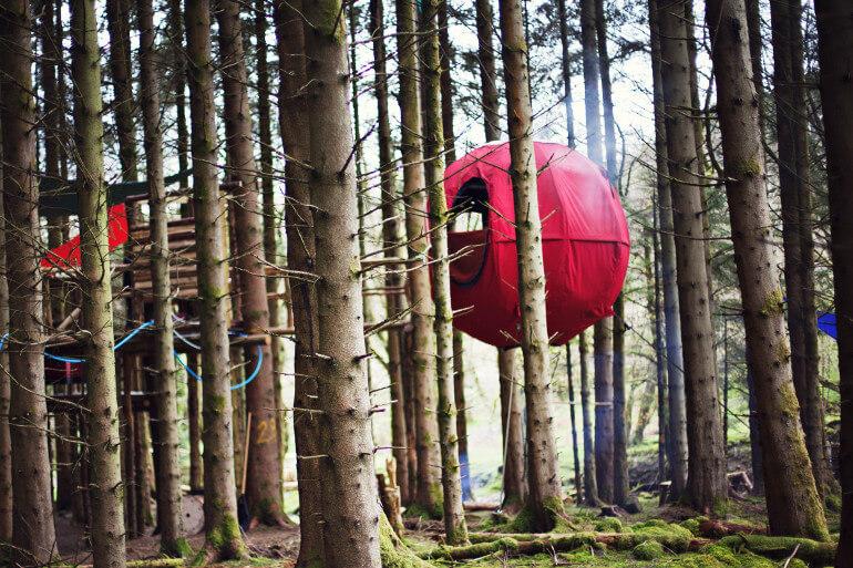 Red Kite Tree Tent - Dragon's Egg