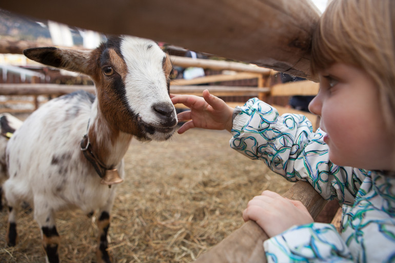 10 things to do with kids on a rainy day in the Cotswolds