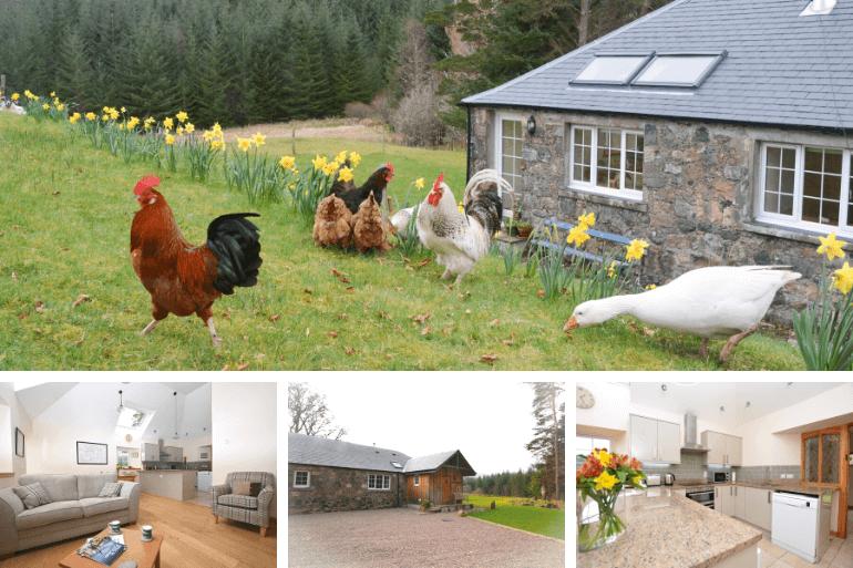 Shepherds Cottage – Erracht