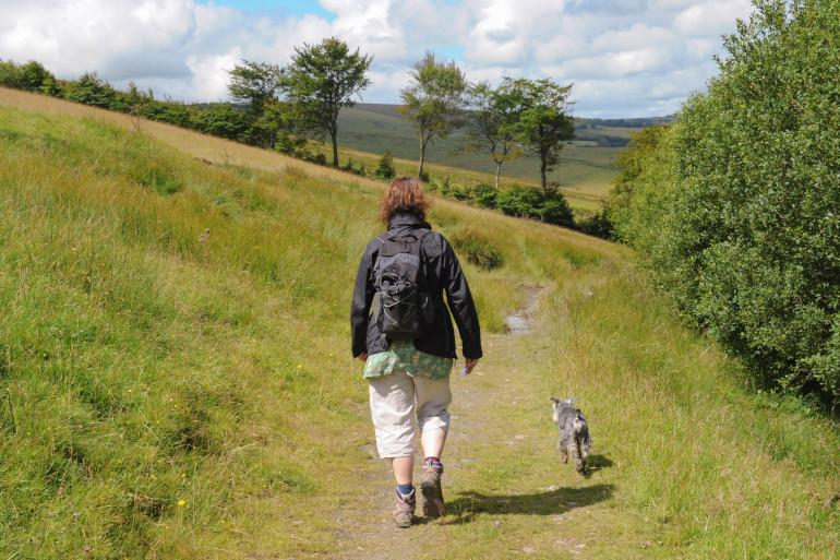 Walks for all abilities in scenic Somerset