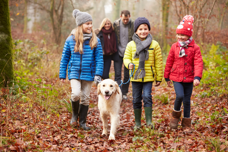 Family-friendly fun for a working farm holiday