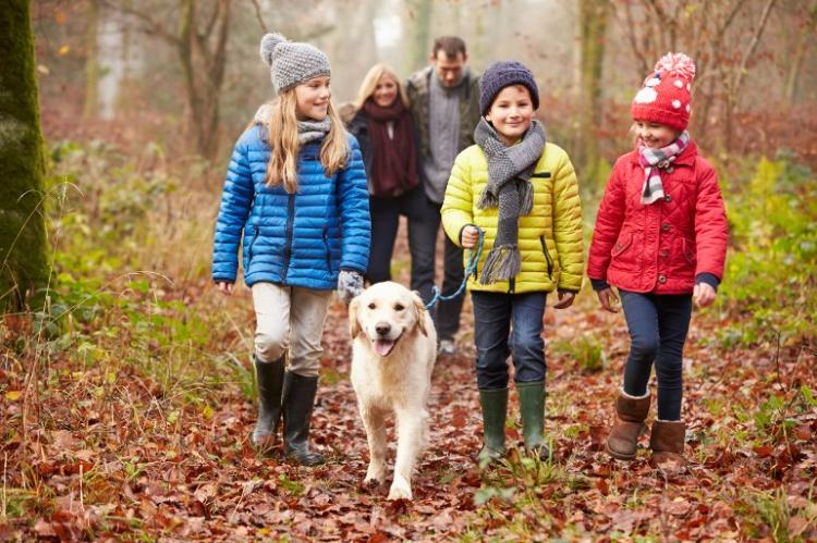 Family friendly fun for a working farm holiday