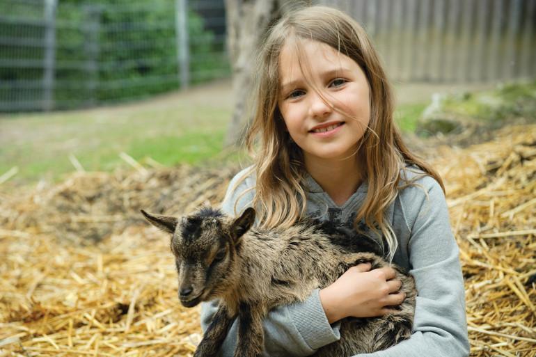 Top 10 farm parks to visit at half term