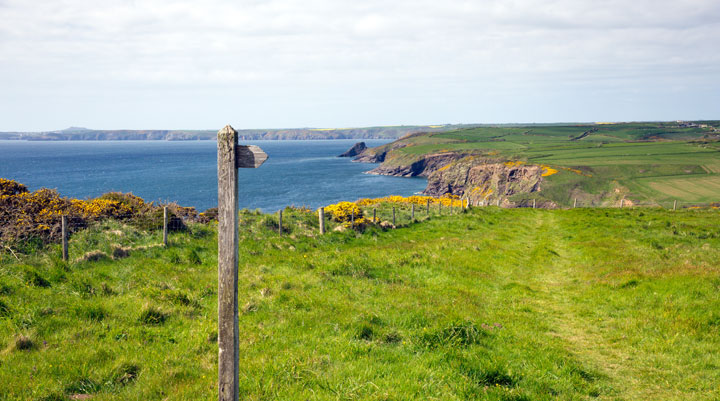 Pembrokeshire Coast Path near Haverfordwest