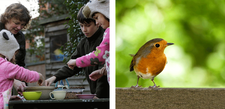 Bird table, children, robin redbreast