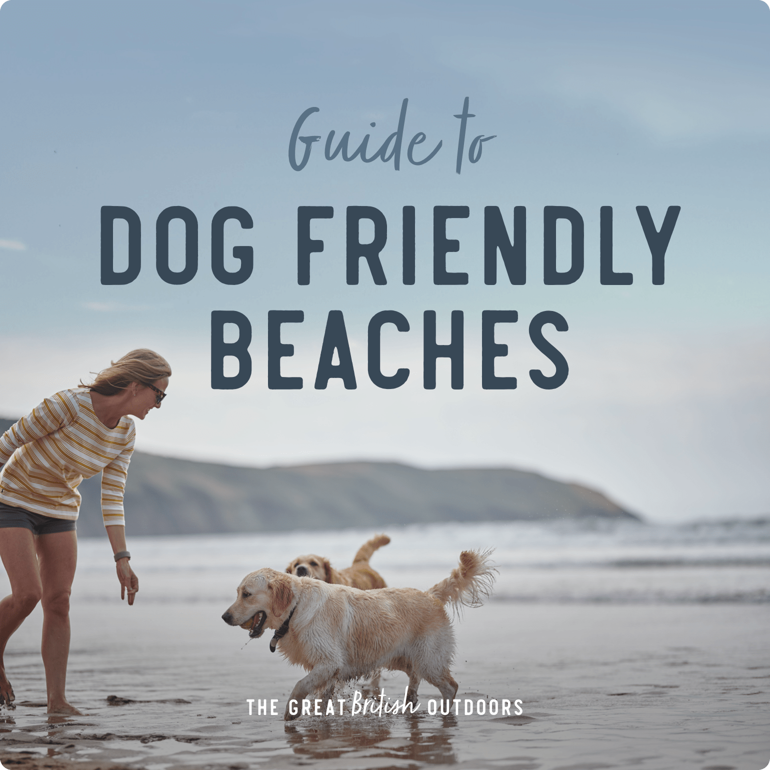 Guide to dog-friendly beaches in the UK