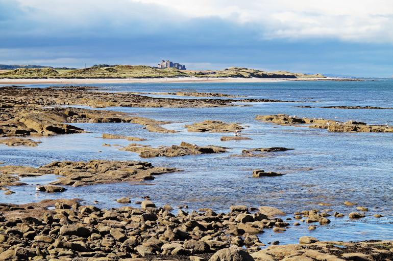 Seahouses - Dog friendly beaches in Northumberland