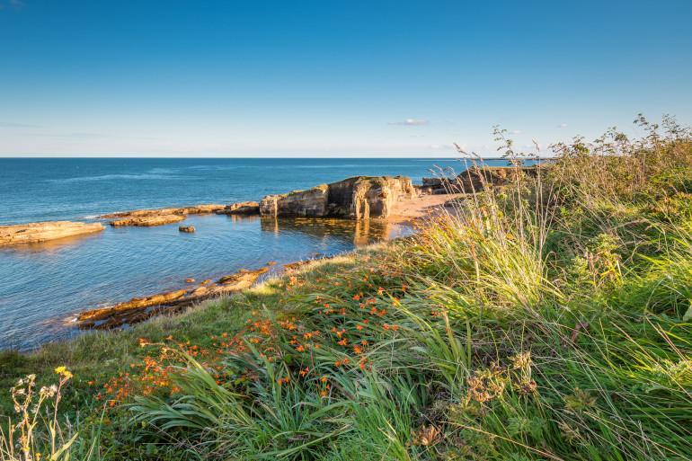 Rumbling Kern - Dog friendly beaches in Northumberland