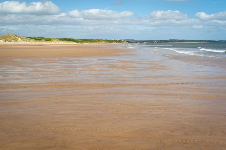 Warkworth - Dog friendly beaches in Northumberland