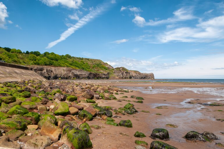 Kettleness Beach - Best dog-friendly Yorkshire beaches