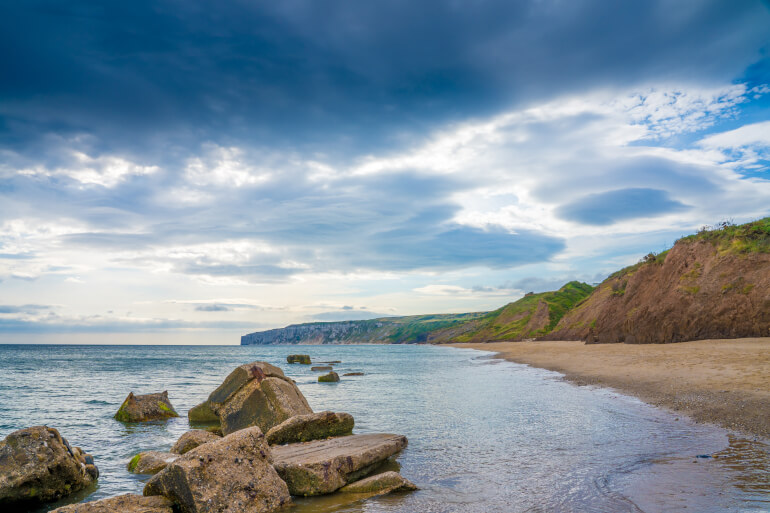 Reighton Beach - Best dog-friendly Yorkshire beaches