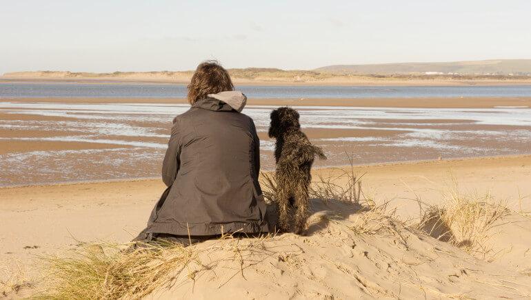 Dog-friendly beaches in Devon