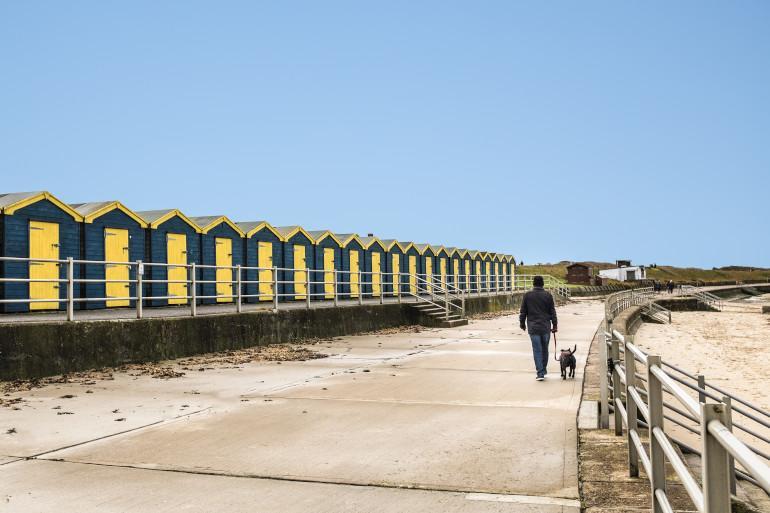 Kent coastal dog walker
