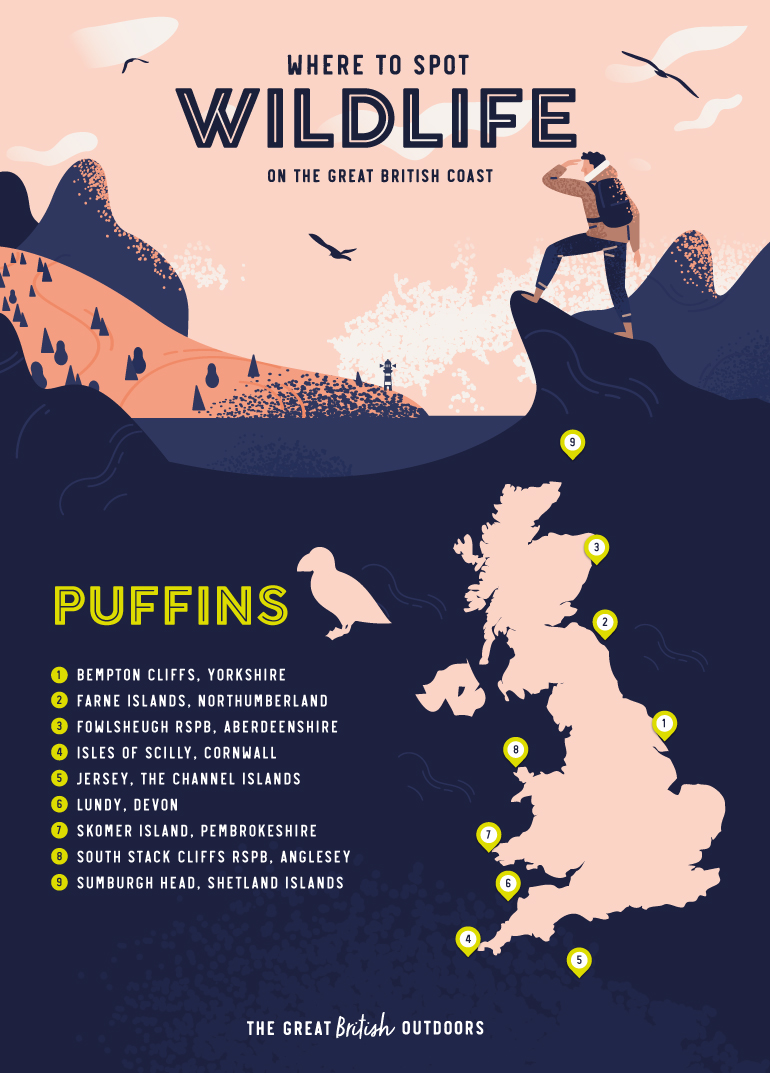 Puffins map