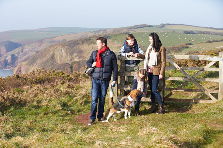 Dog friendly days out around the UK