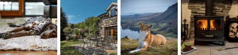 Dog-friendly Lake District