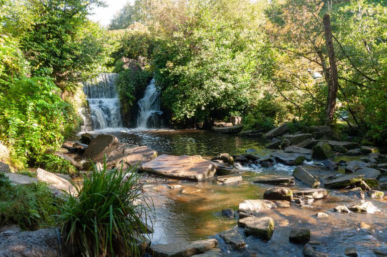Penllergare Valley Woods Walk