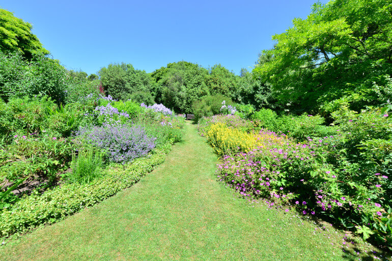 Stroll among the hellebore or wisteria of Highdown Gardens