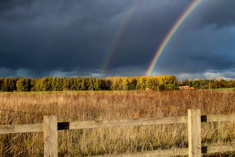 Suffolk rainy day activities
