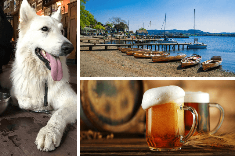 A dog, a beer and picturesque Ambleside