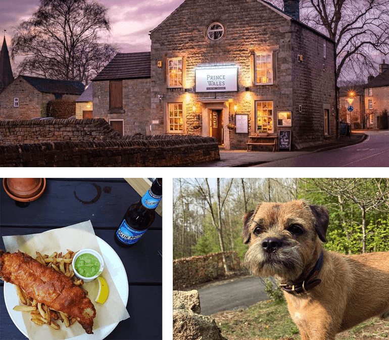 Dog-friendly pubs in the Peak District and Derbyshire