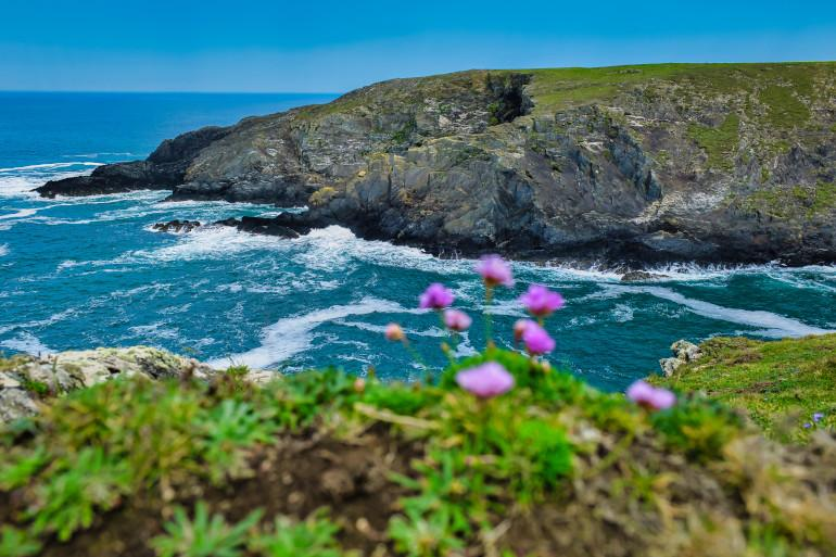 Pembrokeshire walks