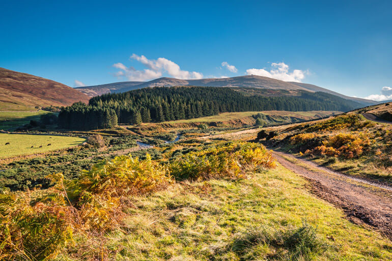 College Valley in the Cheviot Hills