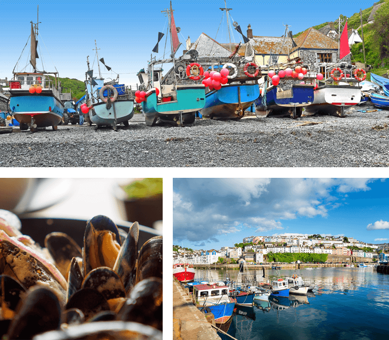 Cadgwith, mussels and Brixham
