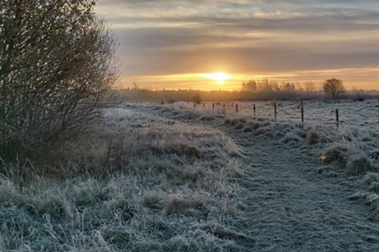 A frosty morning walk as the sun begins to rise