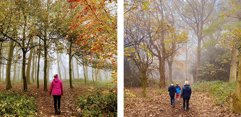 Two pictures of people entering misty woodland
