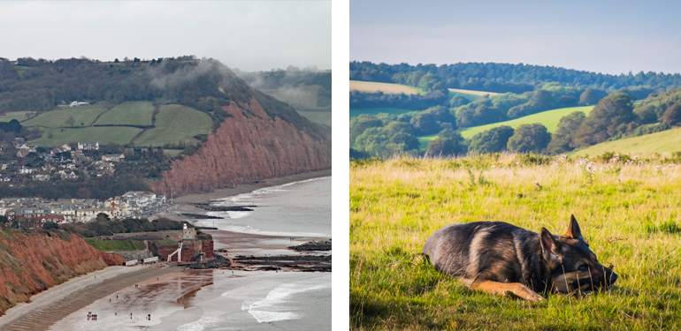 The East Devon Way – The River Sid
