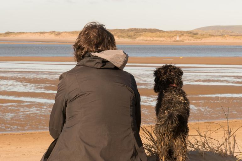 10 best dog walks in Devon