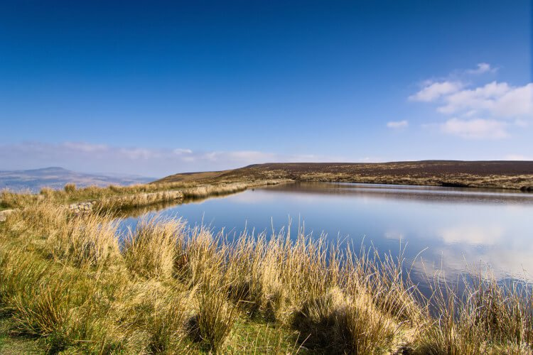 Best places for wild swimming in the Brecon Beacons