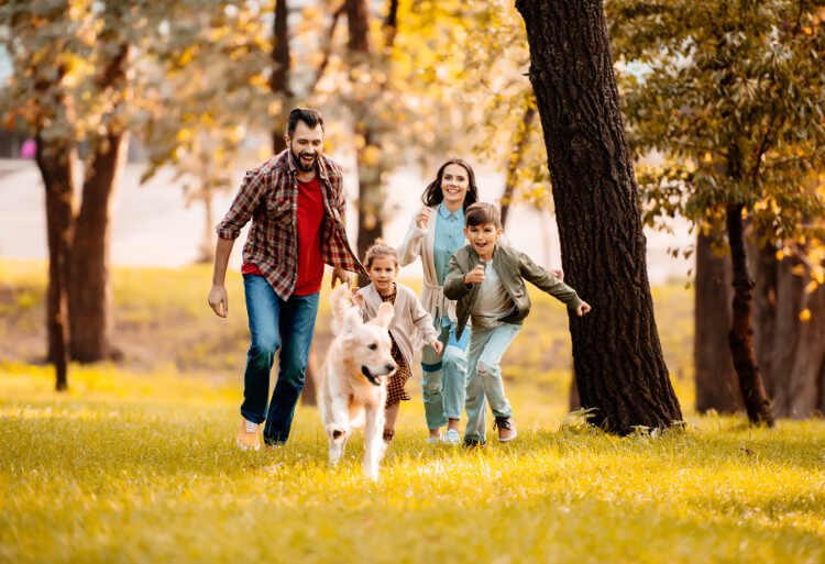 Ideas for dog-friendly holidays with the whole family