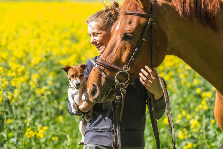 go horse riding in dog-friendly Seahouses