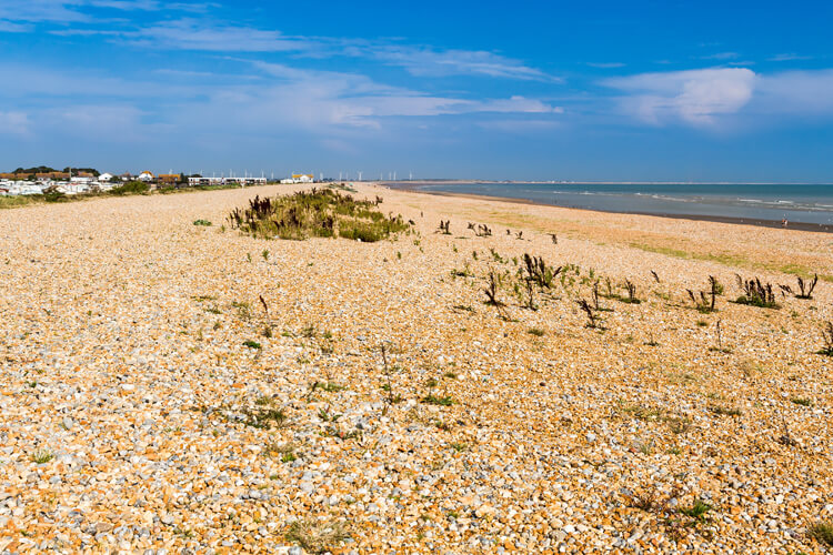 Winchelsea beach